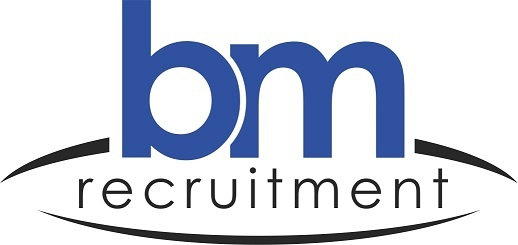 Blue Mountain Recruitment Ltd